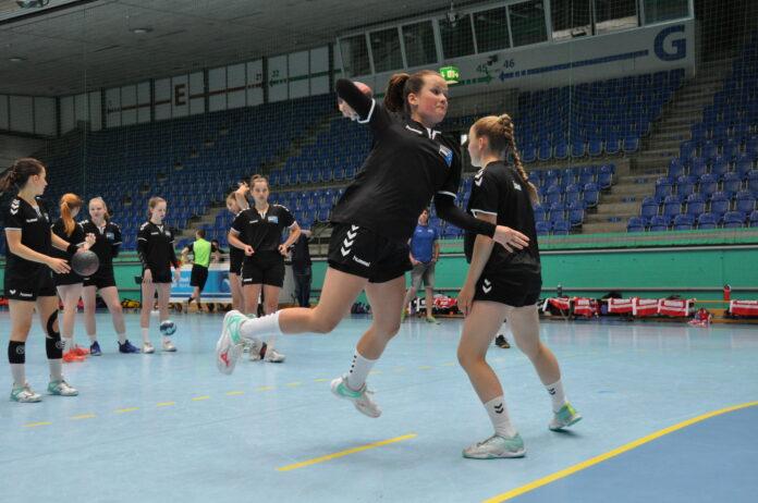 Der Internet-Anbieter unterstützt weiter die ZSC Lions und neu das Frauen-Handballteam Aargau Ost